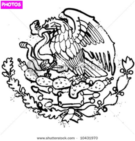mexican eagle coloring page mexican flag emblem mexican flag