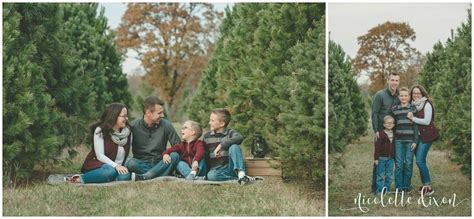 christmas tree farm pittsburgh portrait photographers pittsburgh allison s trees l family