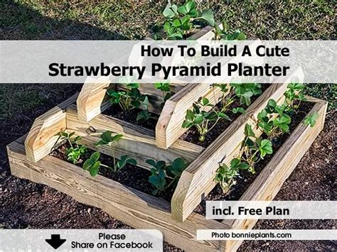 Wooden Pyramid Planter by How To Build A Strawberry Pyramid Planter