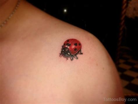 ladybug tattoos pictures ladybug tattoos designs pictures