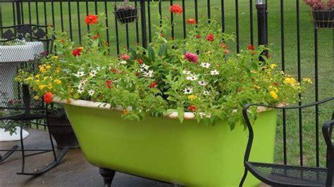 bathtub flower bed 24 best images about bathtub flower beds on pinterest