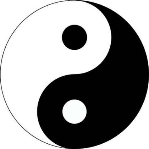 google images yin yang 80 best yin and yang images on pinterest