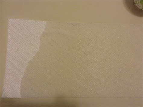 What Makes Paper Towels Absorb Water - results which brand of paper towel absorbs the most water