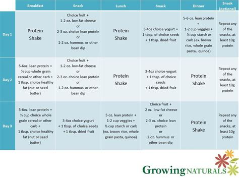 3 protein shakes a day diet sle 3 day plan with gn protein shakes growing