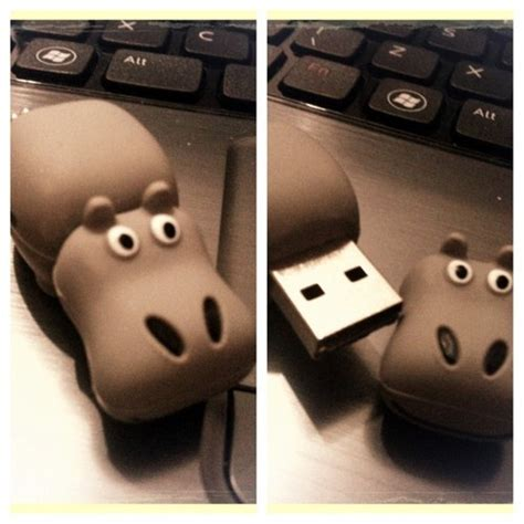 Usb Hippo 96 Best Images About Hip Hip Hippo On