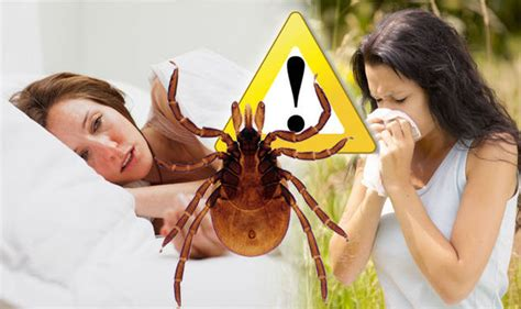 lyme disease symptoms six indicators for running exercise tips for all ages and fitness levels health