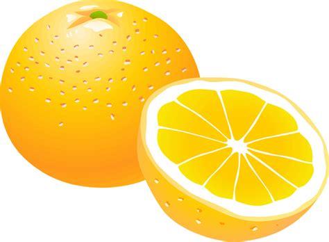 orange clipart best orange clipart 13392 clipartion