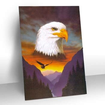 plastic 3d picture animal animation of eagle birds for