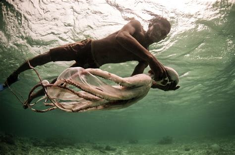 bajau laut    sea nomads james morgan