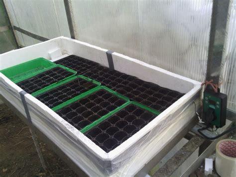serre interieur canadian tire les semis cultiver les tomates
