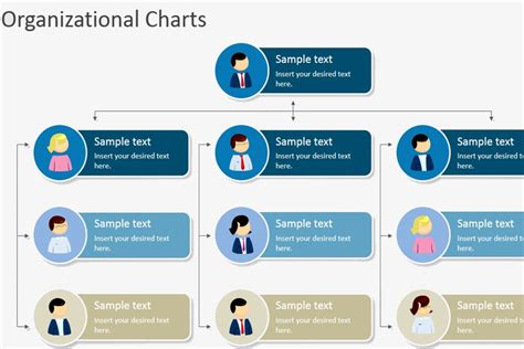 template for an organizational chart hierarchical organizational chart template