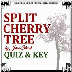 the split cherry tree 5 points answers quot the veldt quot assessment text dependent questions literary elements and critical thinking