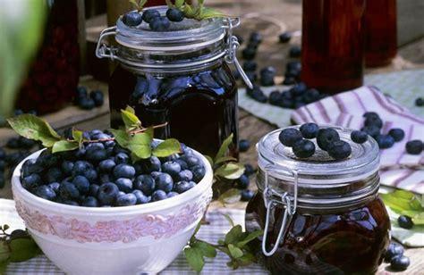 Jam Blueberry By Lkl Present blueberry jam blueberry jam gift
