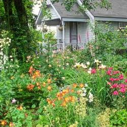 rustic and casual best plants for a cottage garden