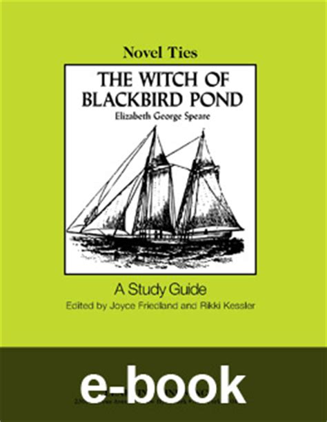 blackbird a novel books witch of blackbird pond novel tie ebook 9780767544115