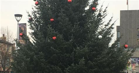 a christmas tree in kent has been described as amazing