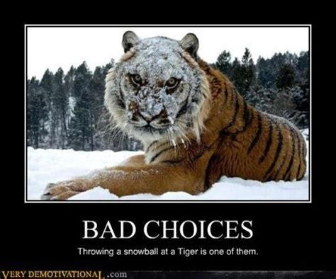 Funny Meme Posters - funny demotivational posters 33 pics