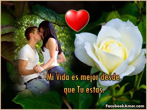 imagenes de rosas con frases de quieres ser mi novia imagenes de rosa rojas con frase de amor im 225 genes