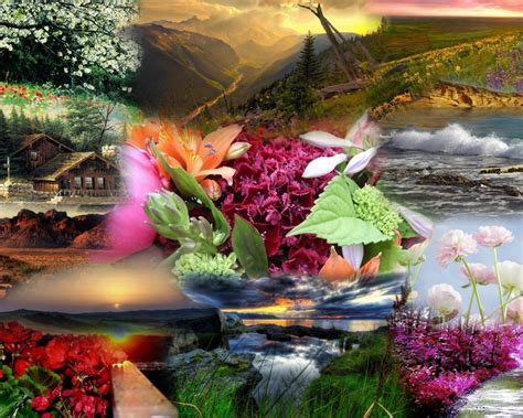 new themes beautiful download natural beauty hd latest wallpaper hd latest wallpapers