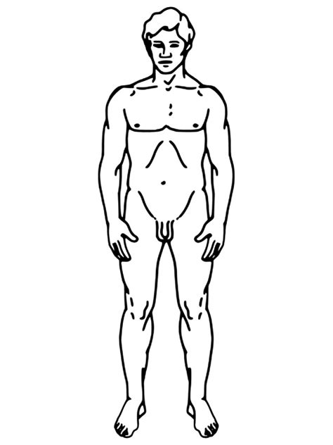 free coloring pages of body worksheet
