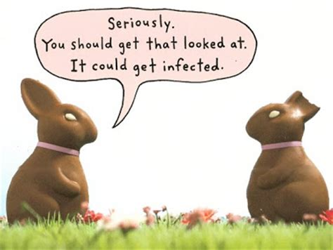 Chocolate Easter Bunny Meme - hoosier journal of inanity when a chocolate bunny meets a