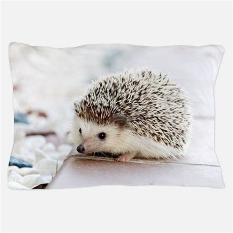 hedgehog bed hedgehog bedding hedgehog duvet covers pillow cases more