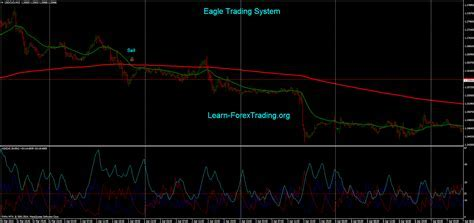 Eagle Trading System   Learn Forex Trading