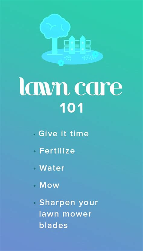 lawn care 101 4 things to know to have a lush green yard