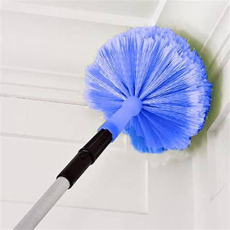 connect clean cob web duster the container store