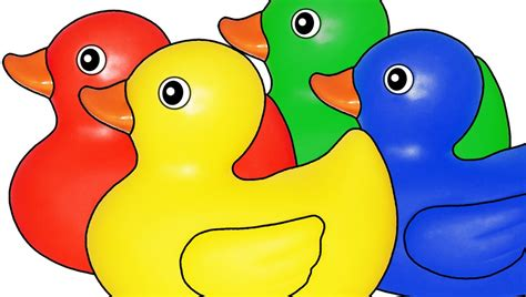 Rubber Ducks Teaching Colors Learning Basic Colours