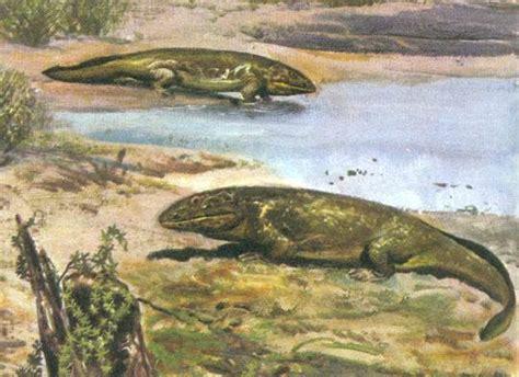 era paleozoica periodo devonico el devonico en el foro mundo prehistorico 2011 12 22 13