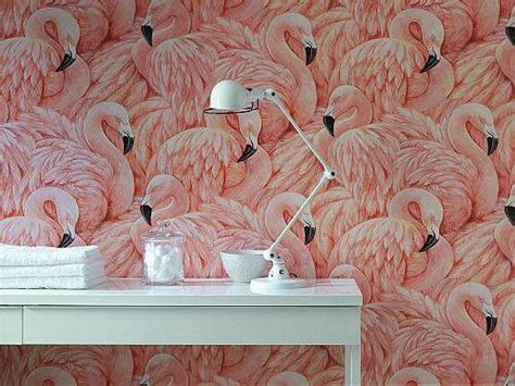 flamingo wallpaper bedroom 1000 images about quot f quot is for flamingo on pinterest