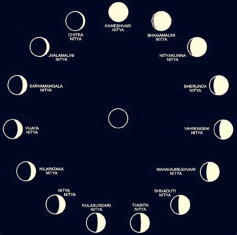Lunar Calendar Gardening by Moon Phases In Order Calendar Template 2016
