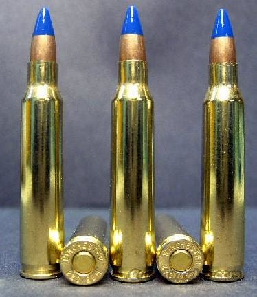20ct., .223 cal. / 5.56 incendiary ammo!