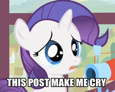 My Little Pony Meme - my little pony memes images my little pony meme wallpaper