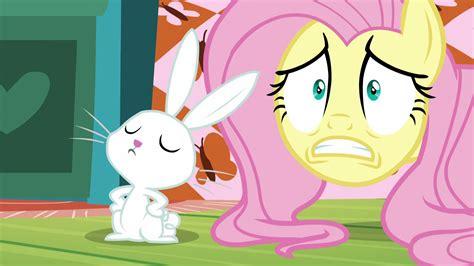 image fluttershy scared  angel sepng