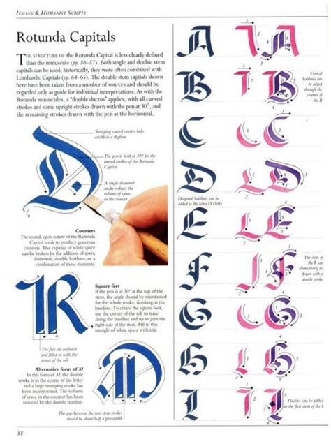lettering tutorial book 46 best lettering images on pinterest typography