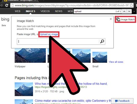 What Do Search For On How To Do An Image Search On 6 Steps With Pictures