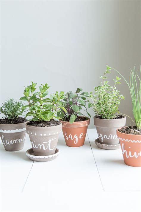 indoor herbs diy labeled indoor herb planters h o m e pinterest