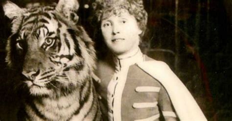möbel starke miss cellania mabel stark the with the tigers