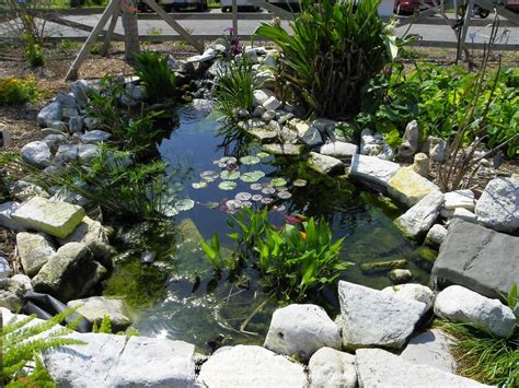 Botanical Garden Corpus Christi Small Pond Waterfall