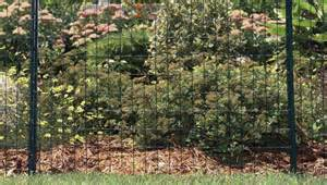 Flower Bed Fencing Dog - garden fence tips