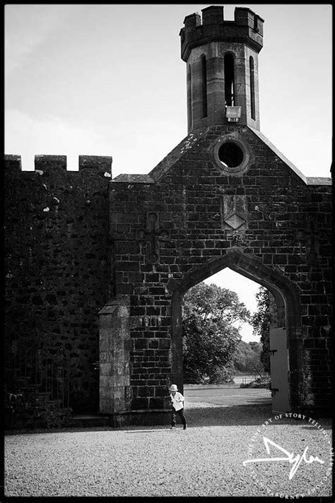 wedding arch northern ireland 53 best northern ireland wedding venues images on