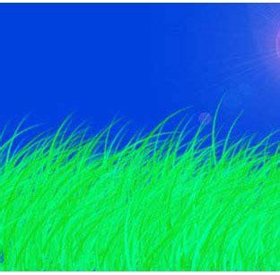 tutorial sholat bergambar membuat efek rumput salih cibubur