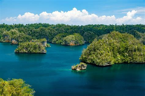 Raja Ampat Biodiversity Eco Resort   All about Raja Ampat