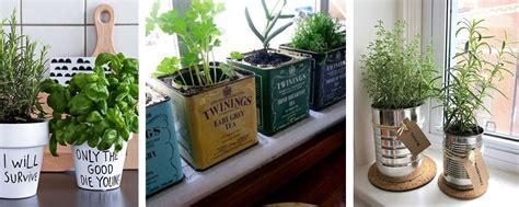 Plante De Cuisine by Diff 233 Rents Supports Pour Faire Pousser Des Plantes