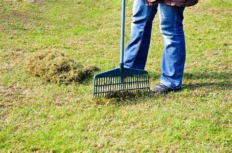 Moos Im Rasen Entfernen 4453 by Wie K 246 Nnen Sie Moos Dauerhaft Entfernen Im Rasen Und Auf