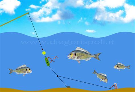 licenza di pesca nelle acque interne tipo b azione potenza e modulo considerazioni sul significato