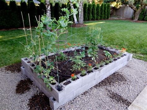 Cinder block raised garden bed   How Does You Garden Grow