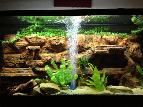 aquarium design austin tx irv2 classifieds wanted items el camino central forum